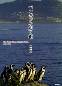 ペンギンの歩く街The Town Where Penguins Roam